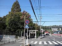 20121025132955_photo