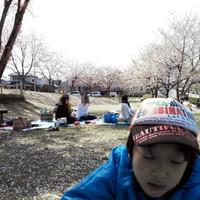 20130405131709_photo_3