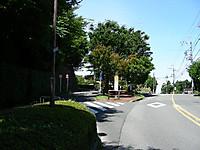 Dscn4464