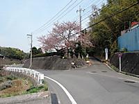 Dscn2209