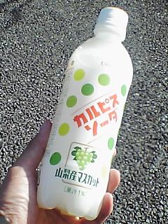 カルピスソーダ山梨産マスカット味